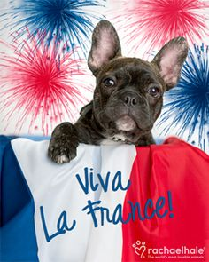 Viva La France.....