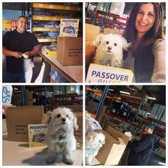 Fun at the warehouse with the whole crew getting ready to ship Passover Bingo games!