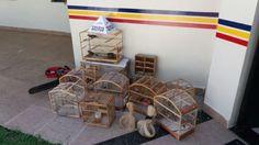 #News  Homem é preso por manter aves silvestres em cativeiro no município de Governador Valadares