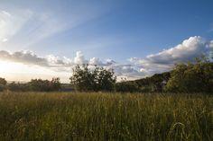 Sky & fields #photography #nature #landscape