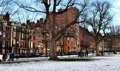 Beacon Hill from Boston Common © Patrick NouhaillerDarcy/Flickr