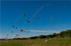 Crazy Kites fly at Brenton Point state Park in Newport, Rhode Island!  #VisitRhodeIsland