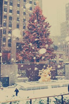 Holiday time in New York City and the beautiful Rockefeller christmas tree! #nyc #holidays