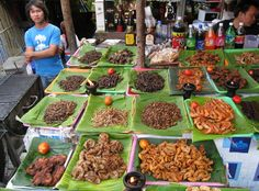 Would you give this a try?? Edible insects are being promoted as a low-fat, high-protein food for people, pets and livestock. According to the U.N., they come with appetizing side benefits: Reducing greenhouse gas emissions and livestock pollution, creating jobs in developing countries and feeding the millions of hungry people in the world.