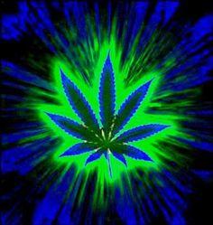 Weed Wallpaper, Pop Art Wallpaper, Skull Wallpaper, Medical Marijuana, Modelo Curriculum, Weed Backgrounds, Weed Art, Flowers