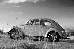VW beetle Photo credit: Ullisan via Foter.com / CC BY-ND