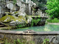 moss covered fountain; Villa Lante, Italy. (would love this as photo mural wallpaper in the bedroom, I think...)