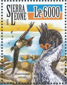 Thomas Sankara, Sea Birds, White Sand Beach, Atlantic Ocean, Sierra Leone, West Africa, Capital City, Beaches, Gate