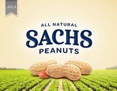 "Check out this @Behance project: ""Sachs Peanuts"" https://www.behance.net/gallery/52522493/Sachs-Peanuts"
