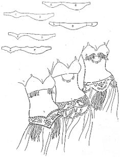belly dance costume patterns - Google Search                                                                                                                                                                                 Más