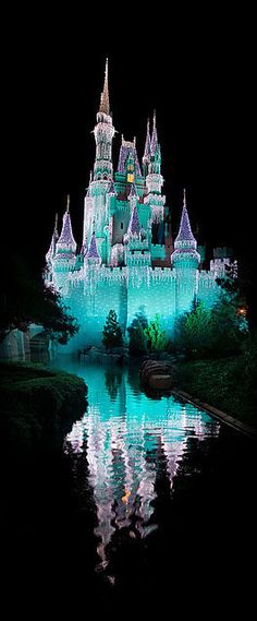 Disney Magical Castle in Disney World.  Love the gorgeous lights on Cinderella's castle.