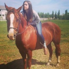 "Fav. Way 2 ride a horse!~Bella~""keep dreamin"""