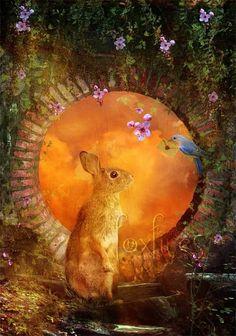 art by aimee stewart images   Aimee Stewart