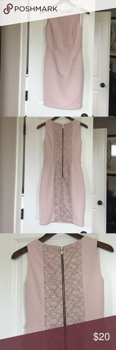 The Limited pink dress with lace detailing The Limited light baby pink dress with gold back zipper and lace detailing in the back, Really nice fitting. Has a place for a thin belt. Super cute with heels and a blazer! Perfect condition, worn once The Limited Dresses Mini