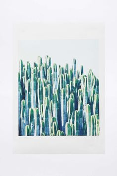Cactus Wall Art - Urban Outfitters