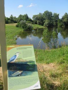 Les bords de Loire à Balbigny