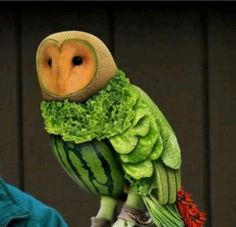 A fruit and veg owl! That's right, an owl made entirely of fruit and vegetables! creative food culinary Plus Fruit Sculptures, Food Sculpture, Animal Sculptures, L'art Du Fruit, Fruit Art, Fruit Salad, Fresh Fruit, Eat Fruit, Fruit Cakes