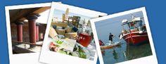 Ferienwohnungen in der Villa Doris bei Hlomotiana im Südwesten von Korfu Villa, Dory, Europe, Corfu Greece, Island, Vacation, Fork, Villas