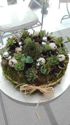 Creation Deco, Terrarium, Succulents, Creations, Plants, Home Decor, Terrariums, Decoration Home, Room Decor