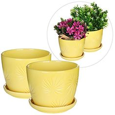 Set of 2 Yellow Sunburst Design Ceramic Flower Planter Pots  Decorative Plant Container with Saucer -- Visit the image link more details. Note:It is affiliate link to Amazon. #tweegram