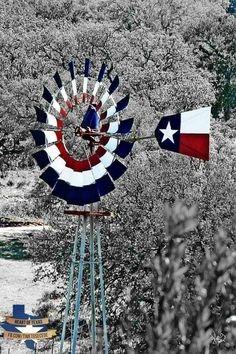 Texas in the snow.