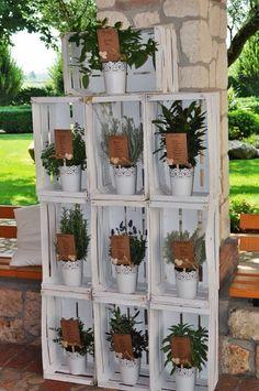 Tableau con le piante