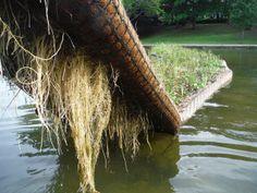Biomatrix Floating Island Ecosystem for aquaponics Floating Plants, Floating Garden, Comment Planter, Permaculture Design, Pond Design, Hydroponic Gardening, Aquaponics Plants, Aquaponics System, Farm Gardens