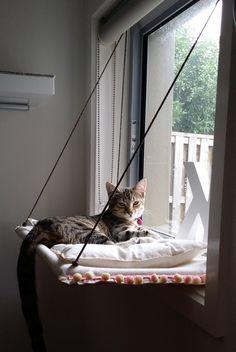 Window cat hammock with cushion by jinstan on Etsy https://www.etsy.com/listing/238683052/window-cat-hammock-with-cushion