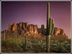 Moonlight |Lost Dutchman State Park,
