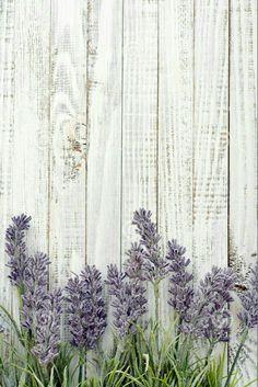 Photo about Bouquet lavender on wooden background closeup. Image of bouquet, flora, provence - 44544312 Flower Backgrounds, Flower Wallpaper, Phone Backgrounds, Wallpaper Backgrounds, Iphone Wallpaper, Speisenkarten Designs, Photo Bouquet, Image Digital, Foto Transfer