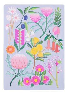 Background Drawing, Background Patterns, Australian Native Flowers, Publication Design, Gouache Painting, Flower Backgrounds, Floral Illustrations, Picture Design, Limited Edition Prints