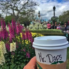 You can learn a lot of things from the flowers... As long as you have #Starbucks at #Disneyland! #dapscaf2016 by mrdaps