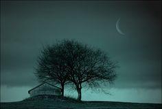 winternacht von Veronika Pinke