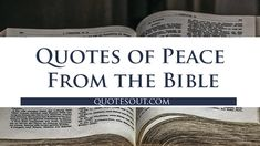 Quotes of Peace From the Bible Bible Quotes About Peace, Best Bible Quotes, Peace Quotes, Biblical Quotes, Jesus Quotes, Great Quotes, Inspirational Quotes, Peace Of God, Make Peace