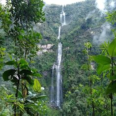 Hiking to waterfalls is always a great way to spend a day. La Chorrera is the tallest waterfall in Colombia at tall! Hiking, Waterfalls, Day, Outdoor, Colombia, Walks, Outdoors, Outdoor Games, Trekking