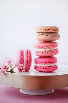 Pink Plus Week: Cannelle Et Vanille - The Bride's Guide : Martha Stewart Weddings - recipe for pretty pink macarons with buttercream filling Macarons Rosa, Pink Macaroons, French Macaroons, Almond Macaroons, Beaux Desserts, Just Desserts, Dessert Recipes, Dessert Healthy, Tasty