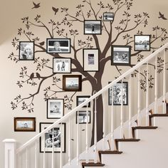Make your staircase a focal point of the home with this family tree wall décor. Apparently, it is looking a very expensive and complicated project, but if you observe in detail you will realize that it is not much complicated as it looks, just some rustic frames, pictures, and wallpaper or simply paint can make the task much easier.