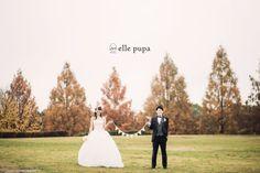 びわ湖クルージング*atセトレ結婚式 の画像|*ウェディングフォト elle pupa blog*