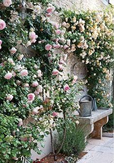 Cool 47 Adorable Flower Garden Ideas For Your Home. More at https://decoomo.com/2018/04/17/47-adorable-flower-garden-ideas-for-your-home/
