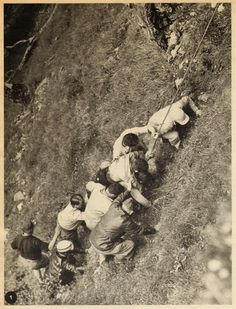 Tour de France 1953. 10^Tappa, 13 luglio. Pau > Cauterets. Gourette. Il giovane Guy Buchaille (1932), dopo aver sorpreso e ben impressionato gli appassionati e gli addetti ai lavori, scalando l'Aubisque insieme con i migliori, cade lungo la discesa verso Gourette finendo in una scarpata. Il suo Tour finisce qui [Le Miroir des Sports. L'Histoire du Tour '53]