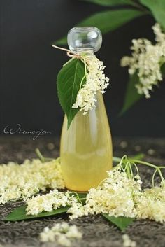 Jabłecznik stracciatella - Wiem co jem Clean Drink, Christmas Food Gifts, Slim Body, Edible Flowers, Home Remedies, Food To Make, Smoothies, Herbalism, The Cure