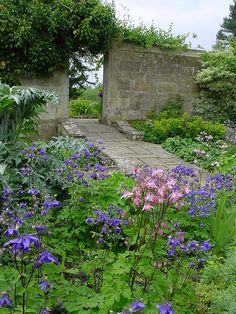 DSC00398 by KarlGercens.com, via Flickr Garden Inspiration, Garden Ideas, Partial Shade Plants, Lavender Blue, Garden Styles, Pathways, Blues, Crafting, Gardens
