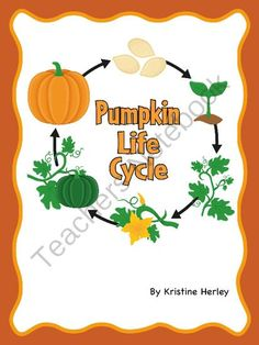 Pumpkin Life Cycle from Kristine's Classroom Creations on TeachersNotebook.com -  - Includes nine different pumpkin life cycle activities.
