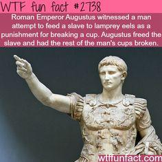 Augustus, Roman Emperor facts-WTF funfacts