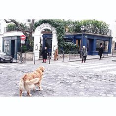 """89 Likes, 1 Comments - Cherry Chow (@taste_of_milano) on Instagram: """"Fall in love with Montmartre 💖 . . #parisvibes #montmartre #tasteofparis #ig_paris #4daysinparis…"""""""