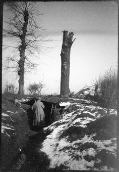 WW1, March 1915. An observationtree at Armancourt ( Somme). ©Réunion des Musées Nationaux-Grand Palais / Pascal Segrette.