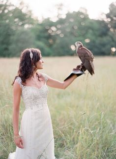 The ring bearer at my wedding is definitely going to be a Harris hawk.