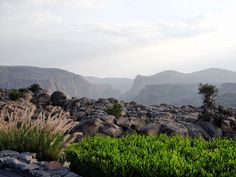 Perched 2000 metres above sea level on the cliffs of Saiq Plateau, Oman sits the highest five star resort in the Middle East: Anantara Al Jabal Al Akhdar. The Middle, Middle East, Oman Tourism, High Five, Five Star, Sea Level, What Is Life About, Beach Resorts, The Incredibles