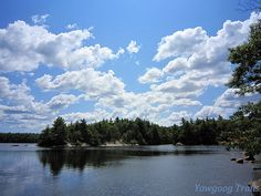 Deer Cove on #Yawgoog Pond on the Yellow Trail in Rockville, Hopkinton, Rhode Island (RI).  A 2014 image by David R. Brierley.