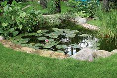 <p>Poczuj relaks w swoim ogrodzie za sprawą oczka wodnego. Plusk wody wprowadza nastrój spokoju. Dekoracyjny zbiornik wodny przyciągnie uwagę i będzie ozdobą Twojego ogrodu. Zobacz jak wykonać własny park wodny z kaskadami.</p>